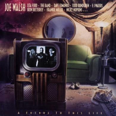 Joe Walsh Robocop
